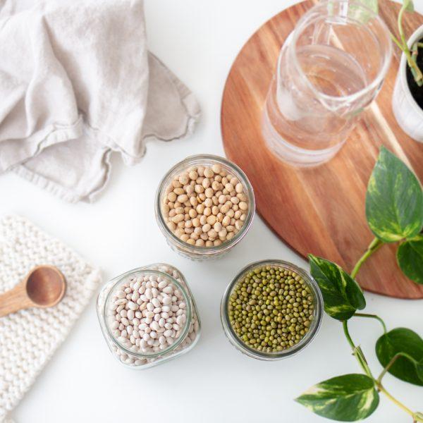 SOJA : Mon meilleur allié pour une alimentation vegan équilibrée